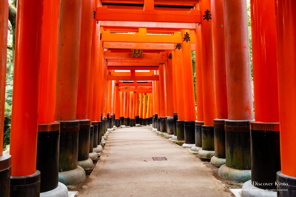 Tunnel of torii gates at Fushimi Inari Taisha, Kyoto