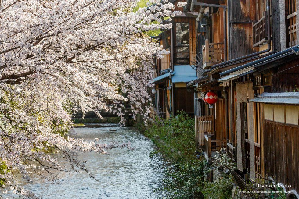 Shirakawa Street