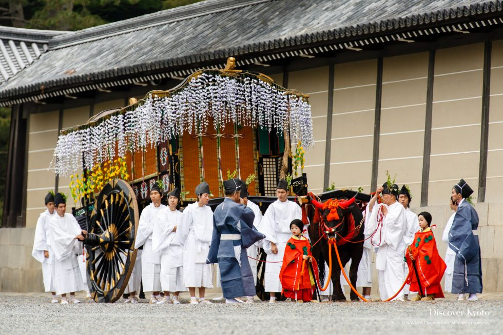 An ox cart makes its way during Aoi Matsuri at the Kamo Shrines.