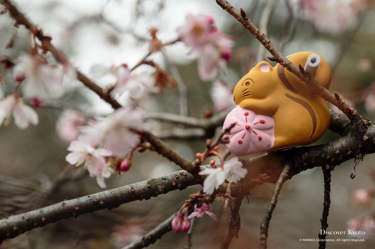 Omikuji Hirano Shrine Squirrel Fortune 01