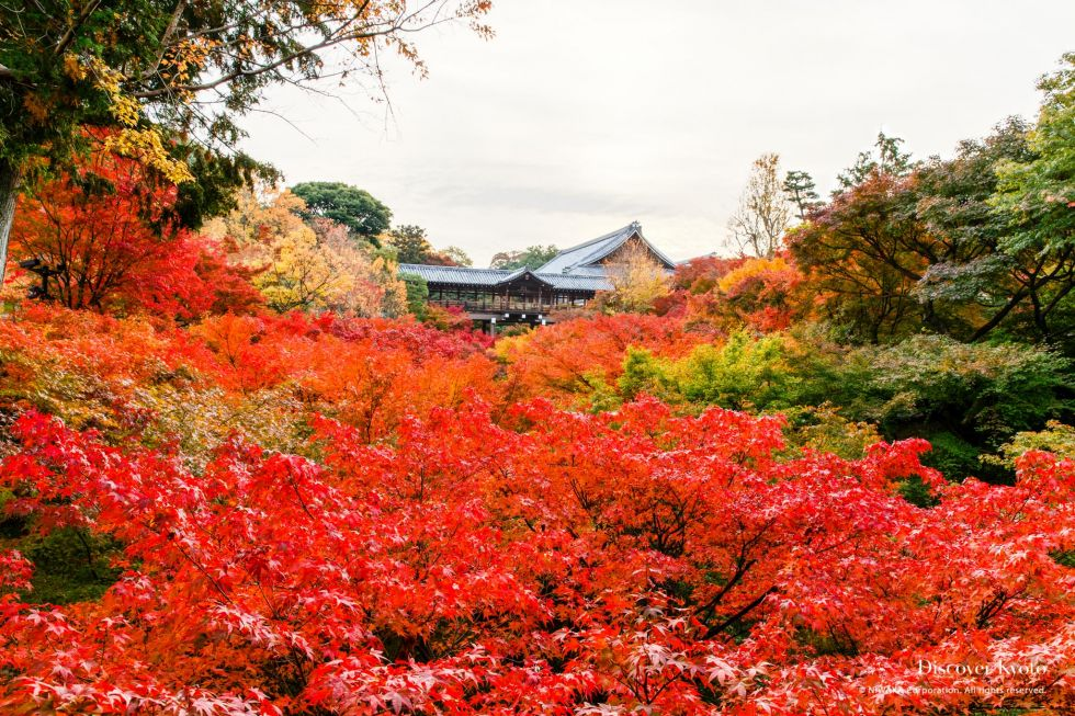 Tōfuku-ji