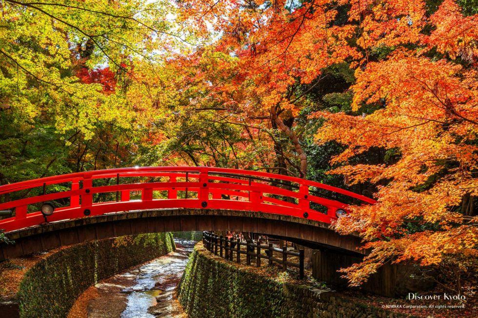 The red brige inside the garden at Kitano Tenmangu