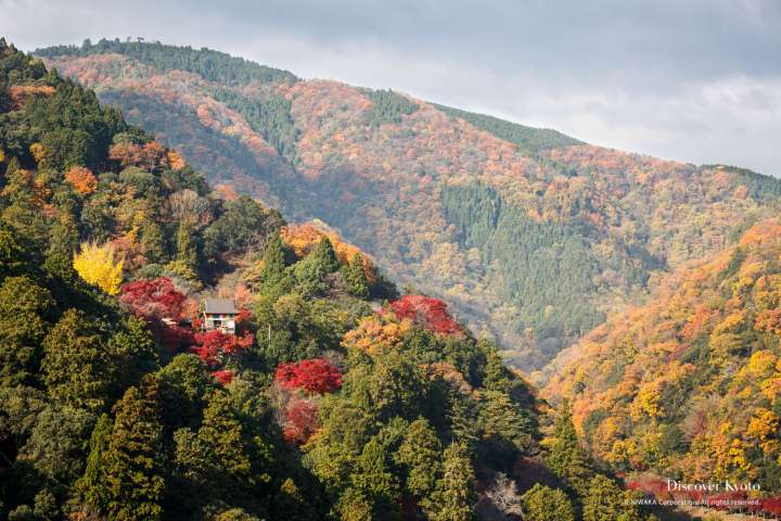 Mountain view of Senkō-ji temple in autumn.