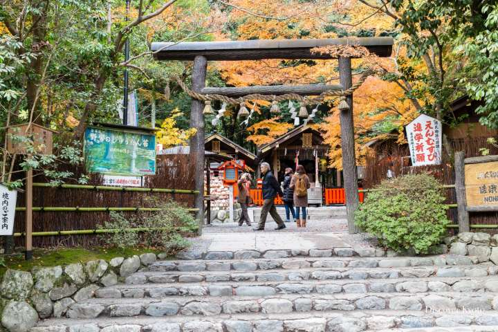 Nonomiya Shrine Torii Gate Autumn