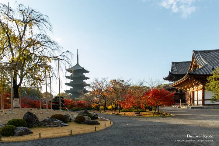 Tō-ji in autumn.
