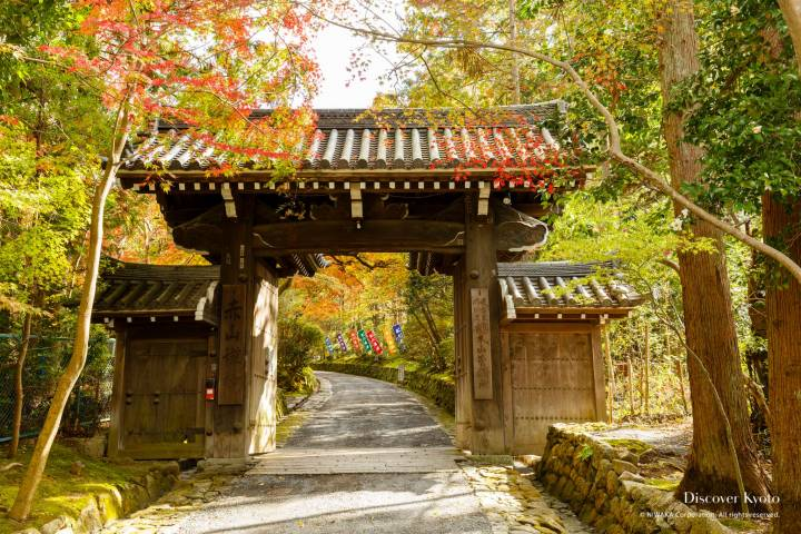 Sekizan Zen-in Autumn Gate Path