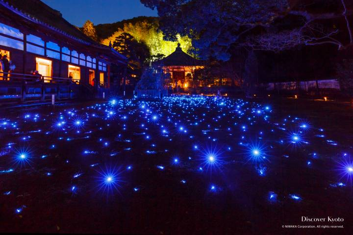 Shōren-in Shiden Garden Illumination