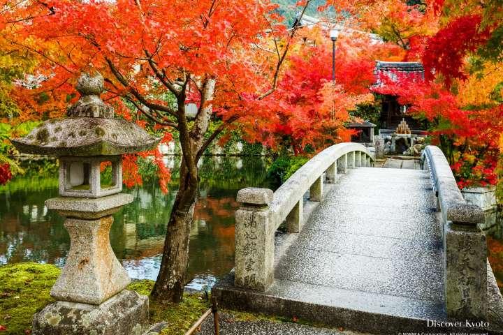 Bridge and autumn leaves at Eikan-dō temple.