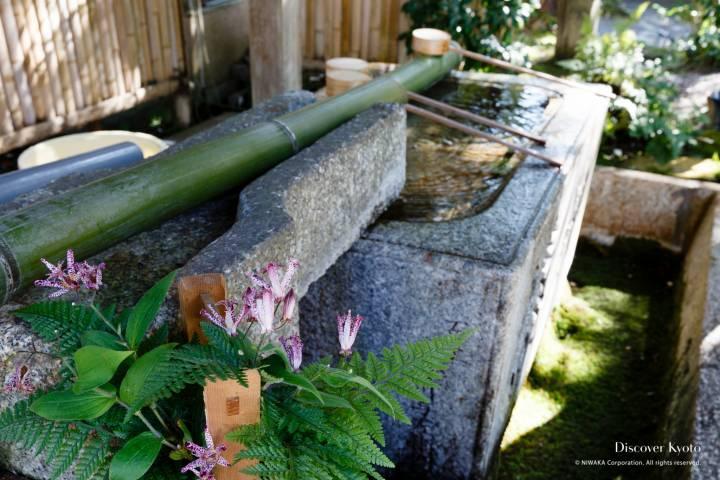 Sekizan Zen-in water basin for purification