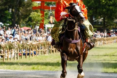 Kamo Kurabeuma horse gallop