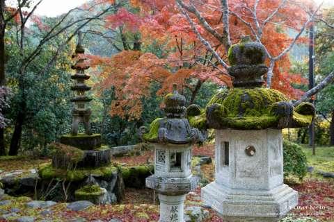 Lanterns and pagoda at Saimyō-ji temple in autumn.