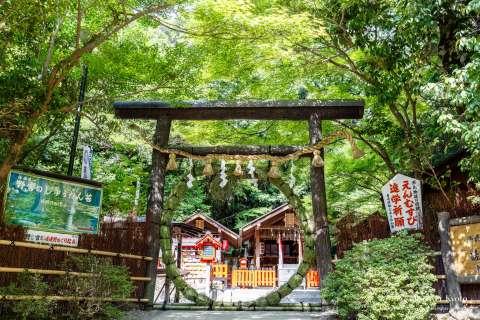 The chinowa during the Nagoshi no Harae at Nonomiya Shrine.