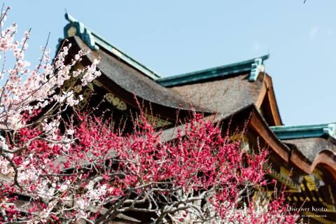 Kitano Kyokusui no En Plum Shrine