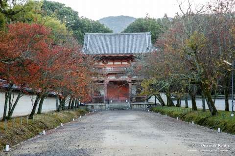 Niō-mon Gate in autumn at Daigo-ji temple.