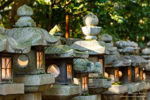Stone lanterns at Iwashimizu Hachimangū.