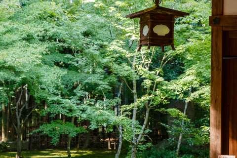 Kōtō-in Garden Lantern