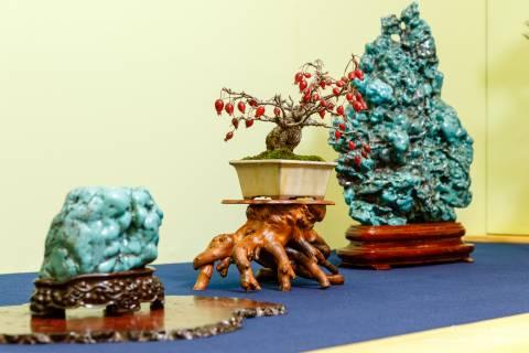 Gafuten Bonsai Exhibition Stone