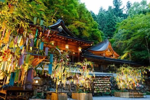 Kifune Tanabata Bamboo Lights