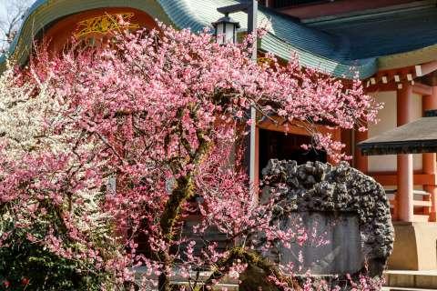 The Hōmotsu-den Treasure Hall at Kitano Tenmangū.