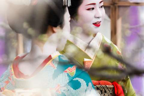 Maiko Ichitomo during the Baikasai tea ceremony at Kitano Tenmangu shrine.