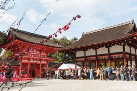 Gate, stage and plum blossoms at Shimogamo Shrine.