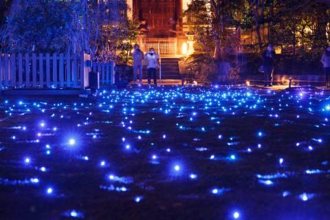 Shōren-in Illumination Garden Stars