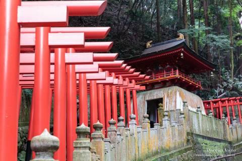 A line of torii gates leading up the mountain during the Aki Matsuri at Tanukidani-san Fudō-in.