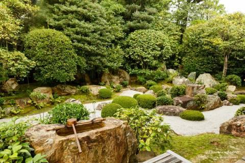 Taizō-in Motonobu no Niwa Garden