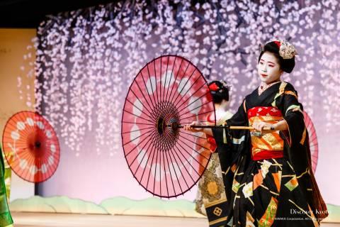 Kotobuki-kai Maiko Umbrellas