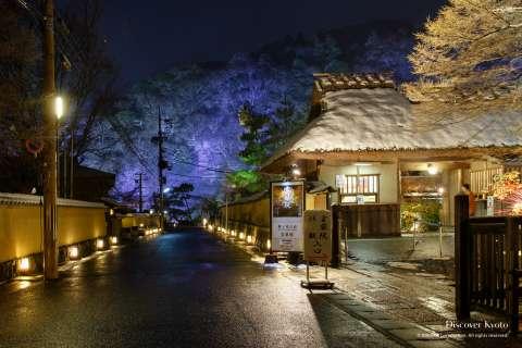 The path towards the Sagano bamboo forest during the Arashiyama Hanatouro at Arashiyama.