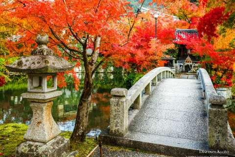 Bridge and autumn leaves at the Benten Shrine at Eikan-dō temple.