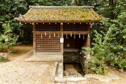 A small spring at Ujigami Shrine.