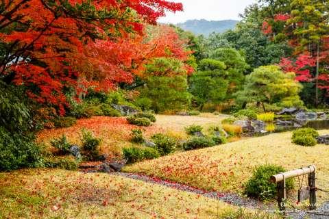 Autumn garden at Murin-an temple.