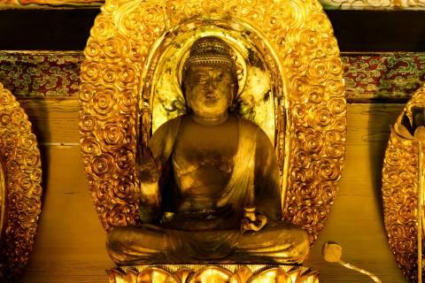 Raigō-in Yakushi Nyorai Buddhist Statue