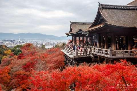 Kiyomizu-dera autumn view.