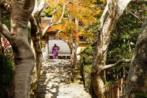 Jakkō-in Autumn Staircase Portrait