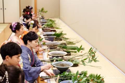 Ikenobo Hatsuike Flowers Seasonal Variety
