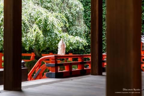 Kenkun Shrine Haiden Cherry Blossoms