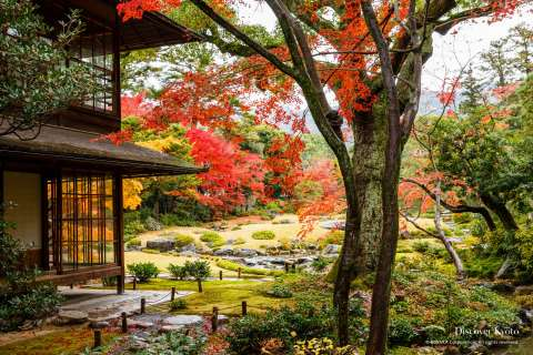 Autumn leaves, building and garden at Murin-an temple.