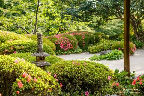 Shisen-dō Azalea Pagoda Garden