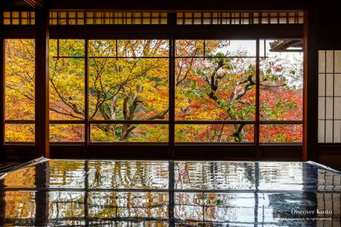 Rurikō-in Autumn Leaves Reflection