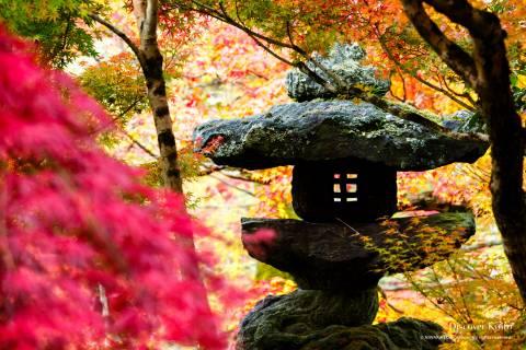 Eikan-dō Autumn 2016 Stone Lantern