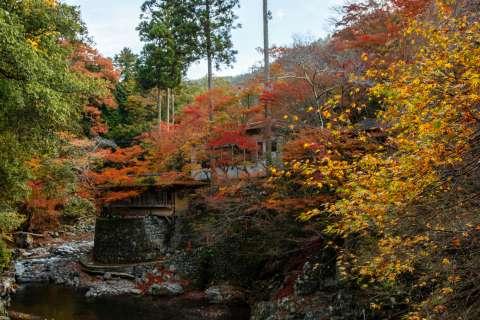 View from the bridge at Saimyō-ji temple.