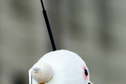 White heron costume head during the Omukae Chōchin ritual at Kyoto City Hall.