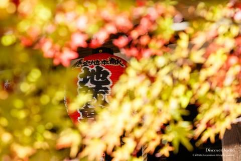 Sekizan Zen-in Autumn Lantern